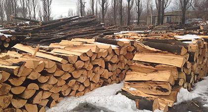 Palivové dřevo cena za m3