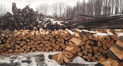 Palivove drevo ostrava